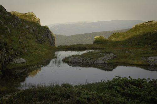 Yddal Naturreservat